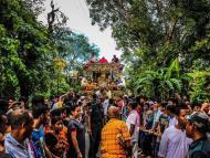 Mayapur Ratha-yatra celebration