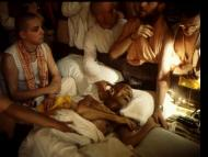 On Prabhupada's Cadmium Poisoning