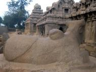 Worship of Lord Brahma, Part 30