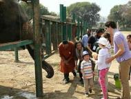 Canadian Prime minister visits Braj's Elephant sanctuary