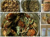 Herbs for the Practice of Yoga 1: Introduction