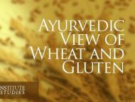 Ayurvedic View of Wheat and Gluten