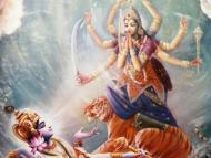 The Best Agent of Krishna