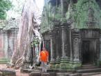 Ta Promph temple 008.jpg
