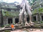 Ta Promph temple 013.jpg