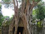 Ta Som temple 014.jpg