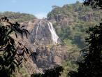 Goa - Dudhsagar Waterfall 028.jpg