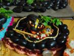 Arjuna Krishna dasa - Vrindavan 11.jpg