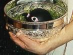 Bhakti Bhalab Puri Goswami, Tulsinath.jpg