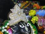 Gaura Nama dasa  Mayapur 1.jpg