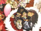 Gopal Krishna Goswmi shilas.jpg